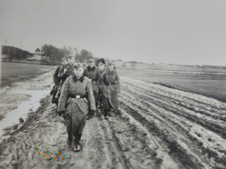 W marszu przez pola 1939