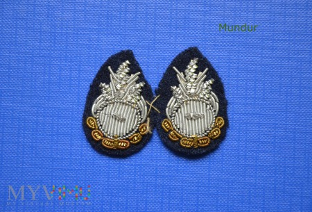 Ogniki na naramienniki OSP haftowane bajorkiem