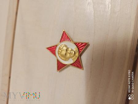 Duże zdjęcie Odznaka ZSRR Młody Lenin