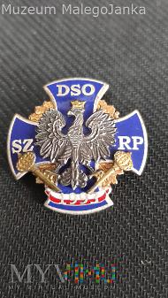 Pamiątkowa Odznaka DSO SZ RP Nr:33K