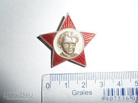 Odznaka Mlody Lenin
