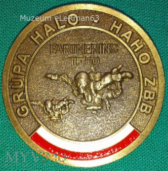Coin GRUPA HALO-HAHO ZB B TF-50 JW KOMANDOSÓW.