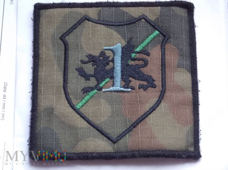 1 batalion czołgów - ŚWIĘTOSZÓW - 10 BRYG.PANC.