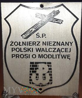 298. Żołnierz Nieznany Polski Walczącej
