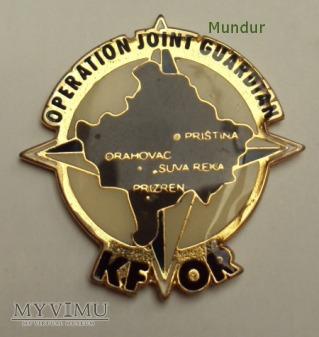 Duże zdjęcie Odznaki pamiątkowe KFOR