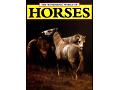 The Wonderful World of HORSES Angela Sayer