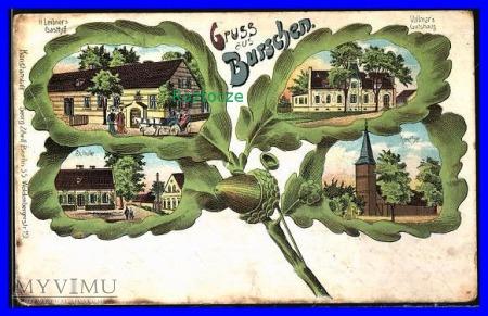 BORYSZYN -BurscheN