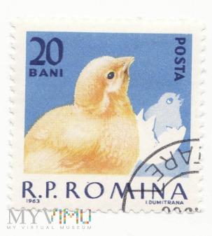 Znaczek pocztowy -Zwierzęta 36