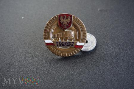 Odznaka honorowa - Wzorowy Kierowca Nr:5906