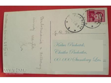 Duże zdjęcie 1949 Pies i Podkowa Leśna pocztówka B.Bierut