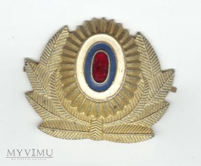 Emblemat na czapkę 1
