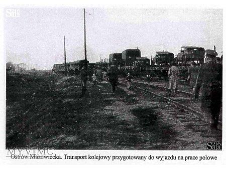 """Zdjęcia z książki: """"19 SOT"""" Adolfa Oracza - #45"""