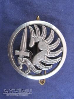 Odznaka TAP beret/Beraudy II
