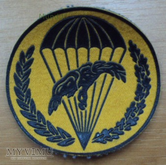 Oznaka 6PDPD:22 Kompania Obrony Przeciwchemicznej