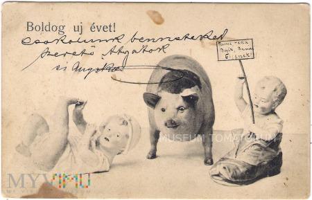 Świnka Noworoczna - 1904