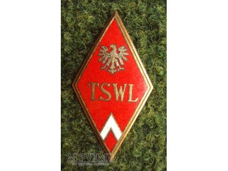 Odznaka Technicznej Szkoły Wojsk Lotniczych