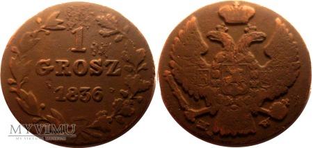 1 grosz 1836 - R