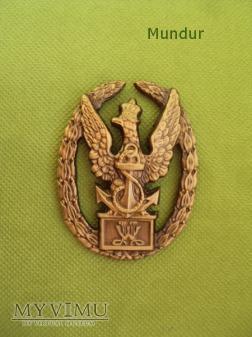 """Duże zdjęcie Odznaka """"Wzorowy Marynarz"""" - ZB. Cegielski"""