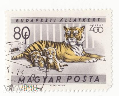 Znaczek pocztowy -Zwierzęta 38