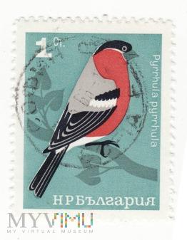 Znaczek pocztowy -Zwierzęta 39