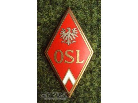 Odznaka Oficerskiej Szkoły Lotniczej