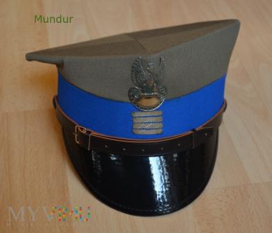 Rogatywka plutonowego WP wz.407A/MON
