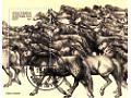 Zobacz kolekcję Koń na znaczkach pocztowych