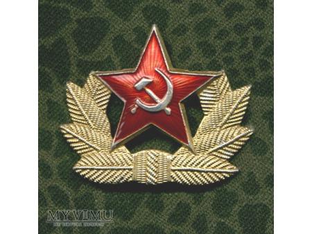 OZNAKA SZEREGOWCA ARMII ZSRR
