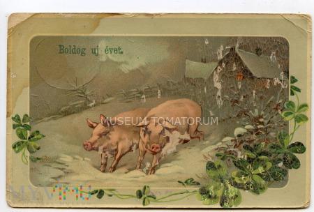 Świnka Noworoczna 1913