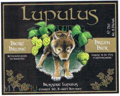 lupulus biere brune