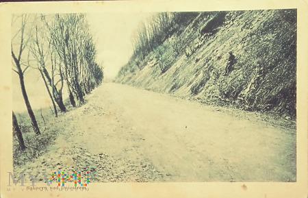 Bakocyn nad Dniestrem.