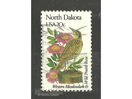Dakota Północna.