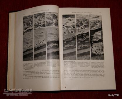 """Książka """"Verdenshistorie""""( Historia świata)"""