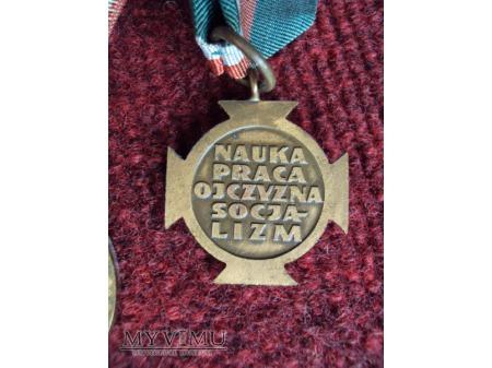 Odznaka za Zasługi dla ZSMP