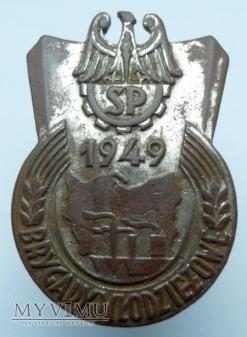 Duże zdjęcie Odznaka pamiątkowa Służba Polsce 1949