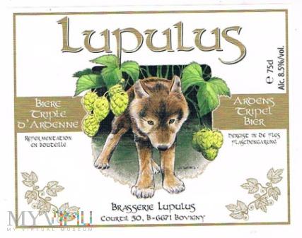 lupulus aroens tripel bier