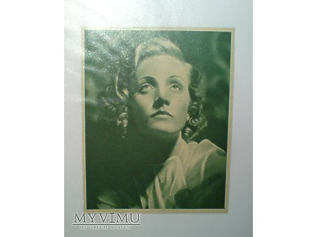 Duże zdjęcie Marlene Dietrich zdjęcie wycinek prasowy