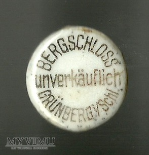 Bergschloss Grünberg Schl