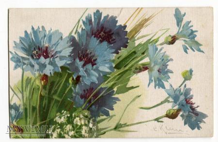 Catharina C. Klein piękne kwiaty Flowers