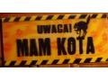 UWAGA ! MAM KOTA