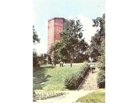 KRUSZWICA, Mysia Wieża.