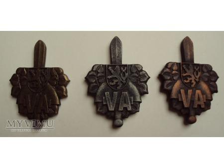 Odznaki Akademii Wojskowej