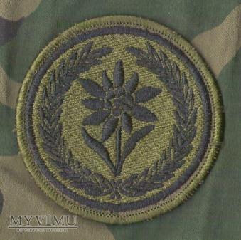 Oznaka 21 Brygady Strzelców Podhalańskich -polowa