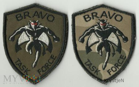 ISAF IX TASK FORCE BRAVO