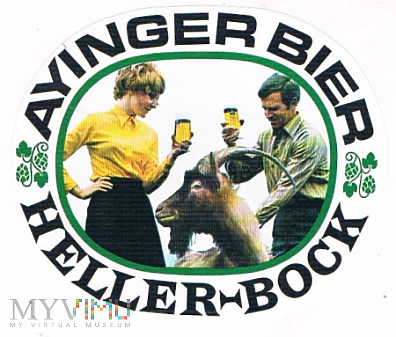 ayinger bier heller-bock