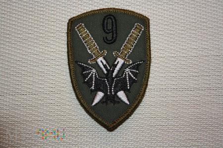 9 pułk rozpoznawczy Lidzbark Warminski(hawt).