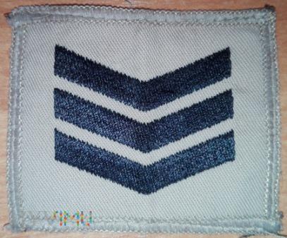 Sergeant - pustynna (mała)