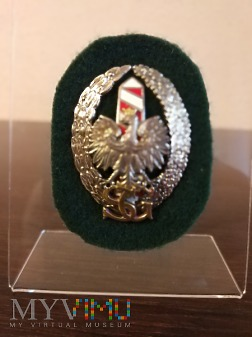 Duże zdjęcie Odznaka Straż Graniczna