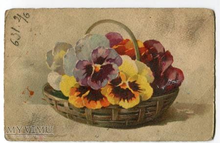 Duże zdjęcie Catharina C. Klein kwiaty bratki Flowers