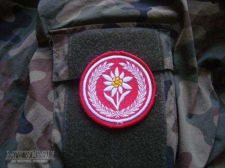 1 Batalion Strzelców Podhalańskich, 21 BSP